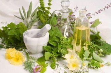 Лікарські рослини історія