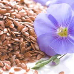 властивості насіння льону звичайного